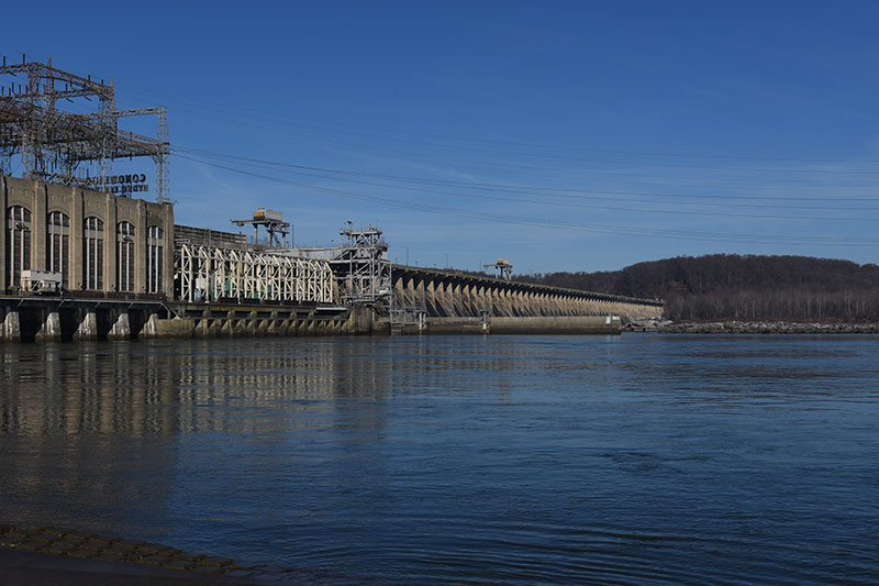 a guide to viewing bald eagles at conowingo dam