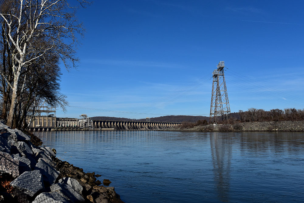 A Guide To Viewing Bald Eagles At Conowingo Dam Nature And