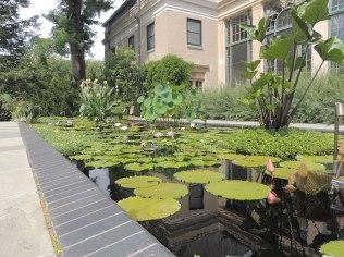 Lockwood-Water-Gardens