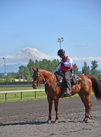 Emerald-Downs